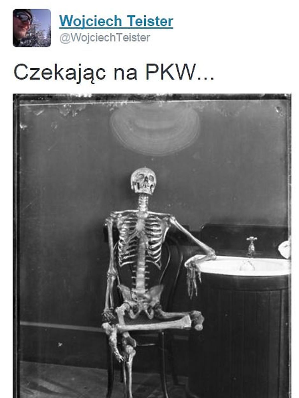 szkielet czeka na wyniki wyborów
