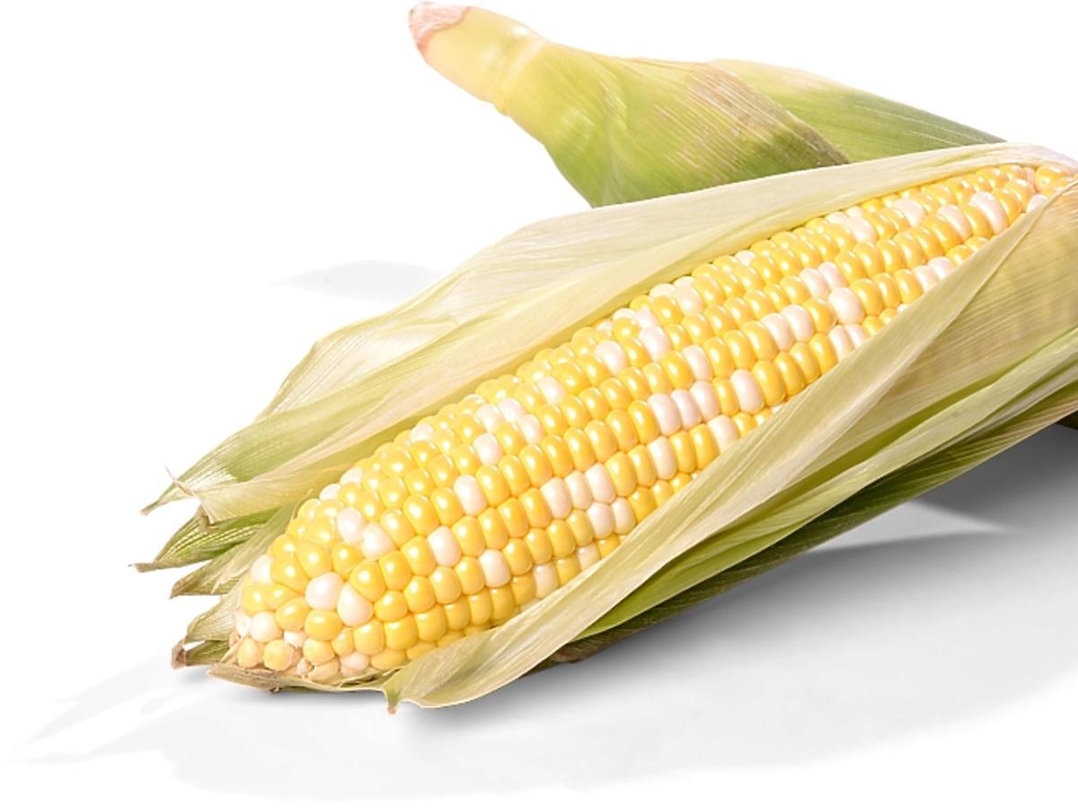dwie kolby kukurydzy