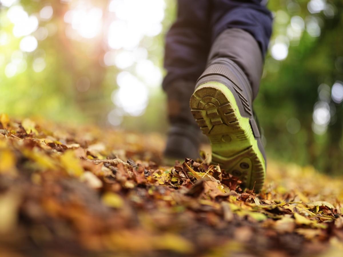dziecko chodzące po liściach