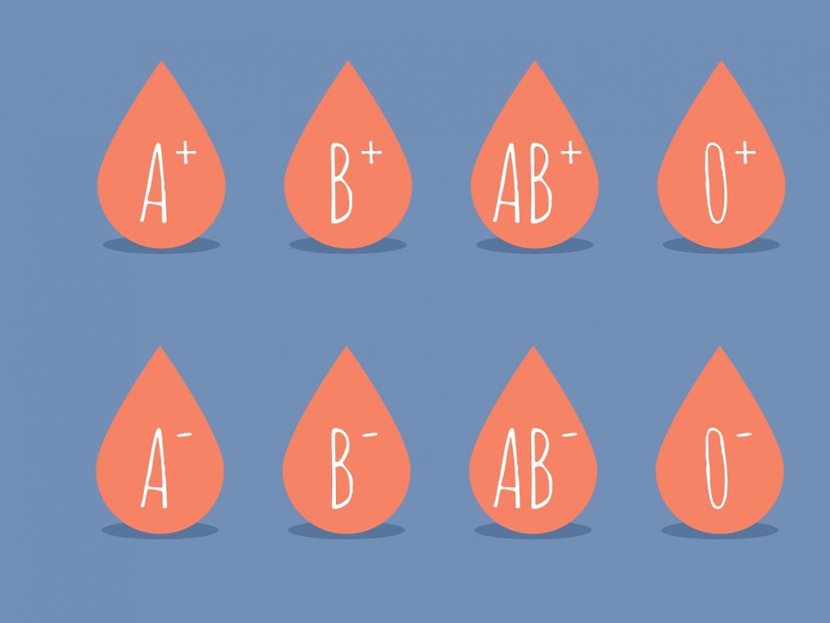 Grupy krwi