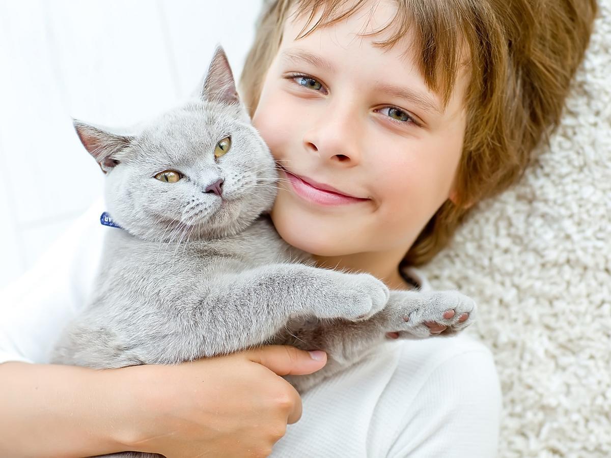 Jaka rasa kota dla rodziny z dzieckiem?