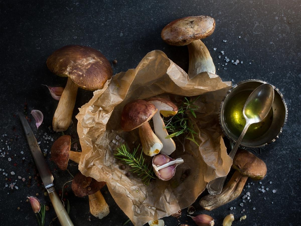 Jakie grzyby są zdrowie i czy warto je jeść?