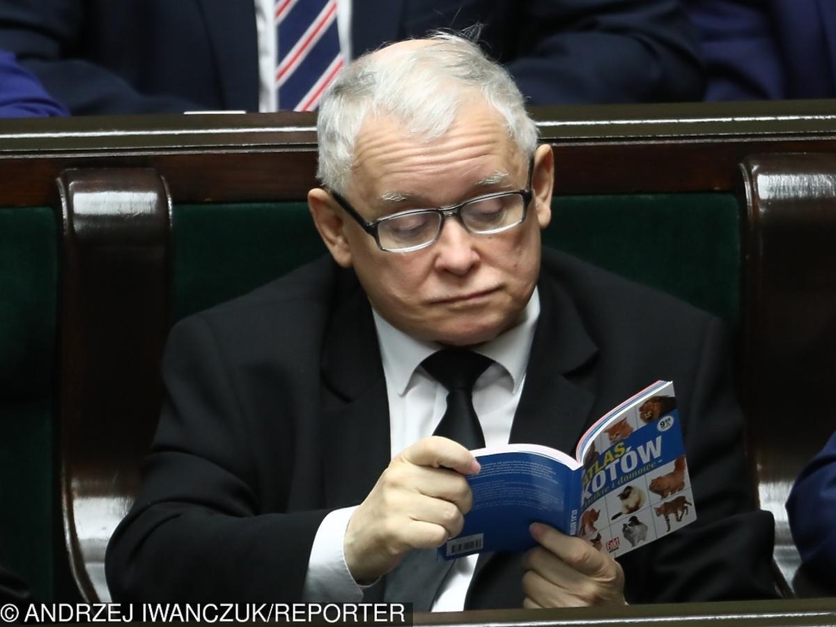 Jarosław Kaczyński czyta w Parlamecie Atlas kotów