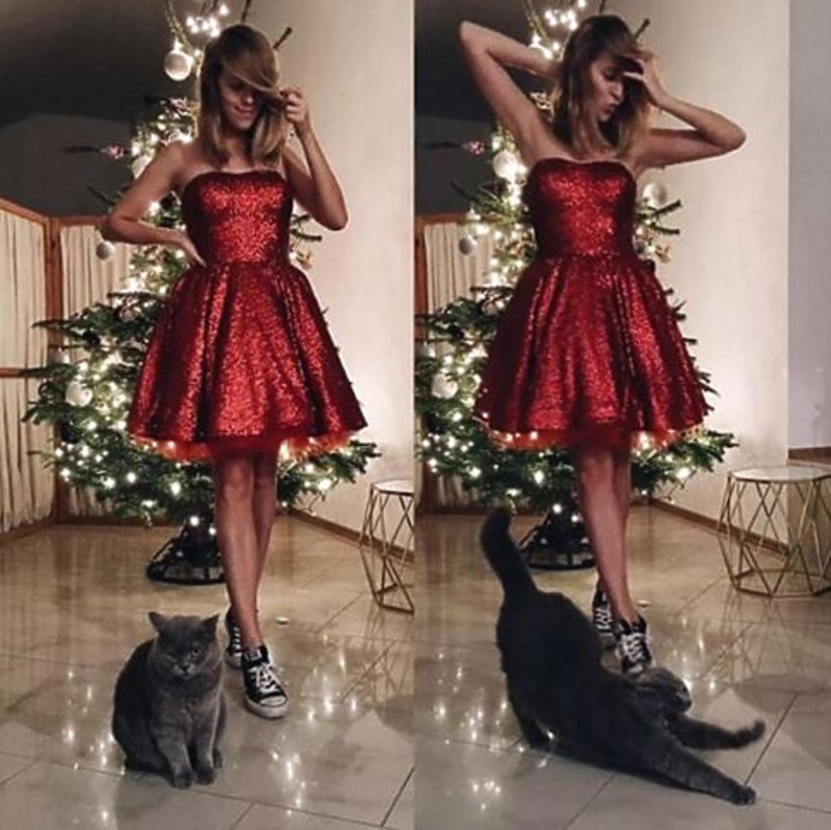 Jessica Mercedes z kotem pod choinką