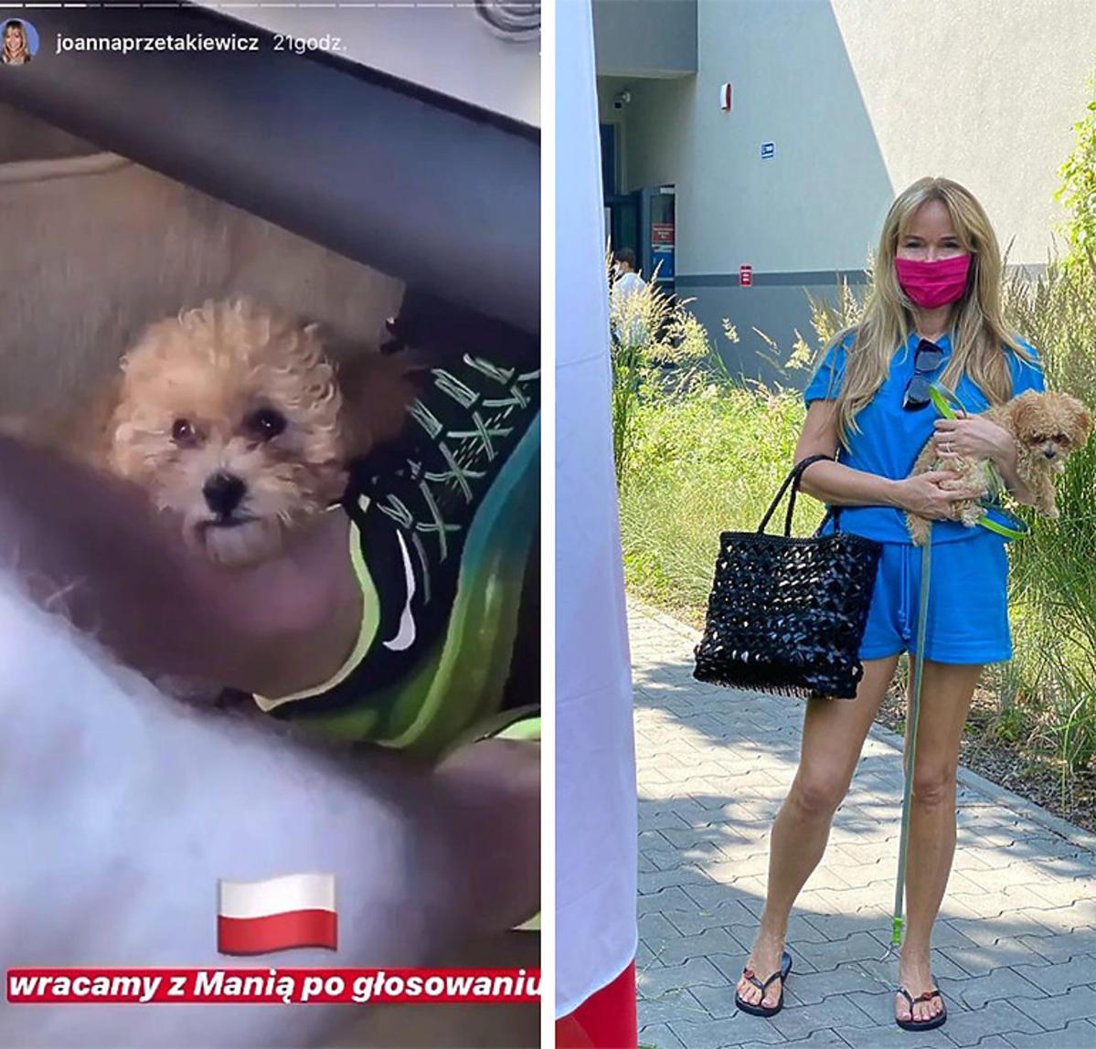Joanna Przetakiewicz w ogniu krytyki za niebezpieczne przewożenie psa w samochodzie