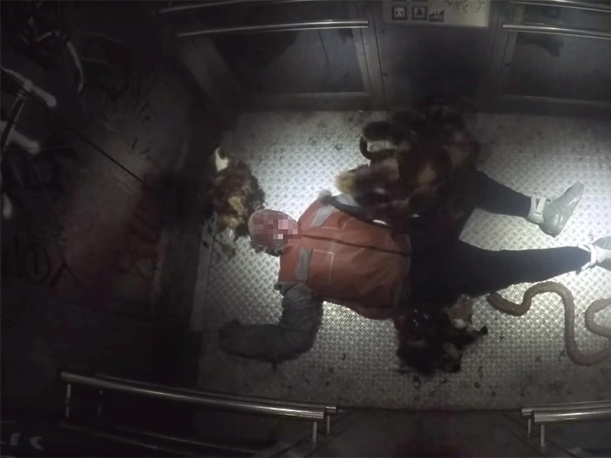 Kadr z filmu o psie-pająku SA Wardegi