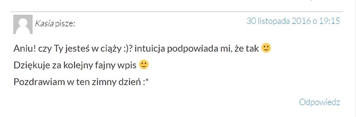 Komentarz na blogu Anny Lewandowskiej