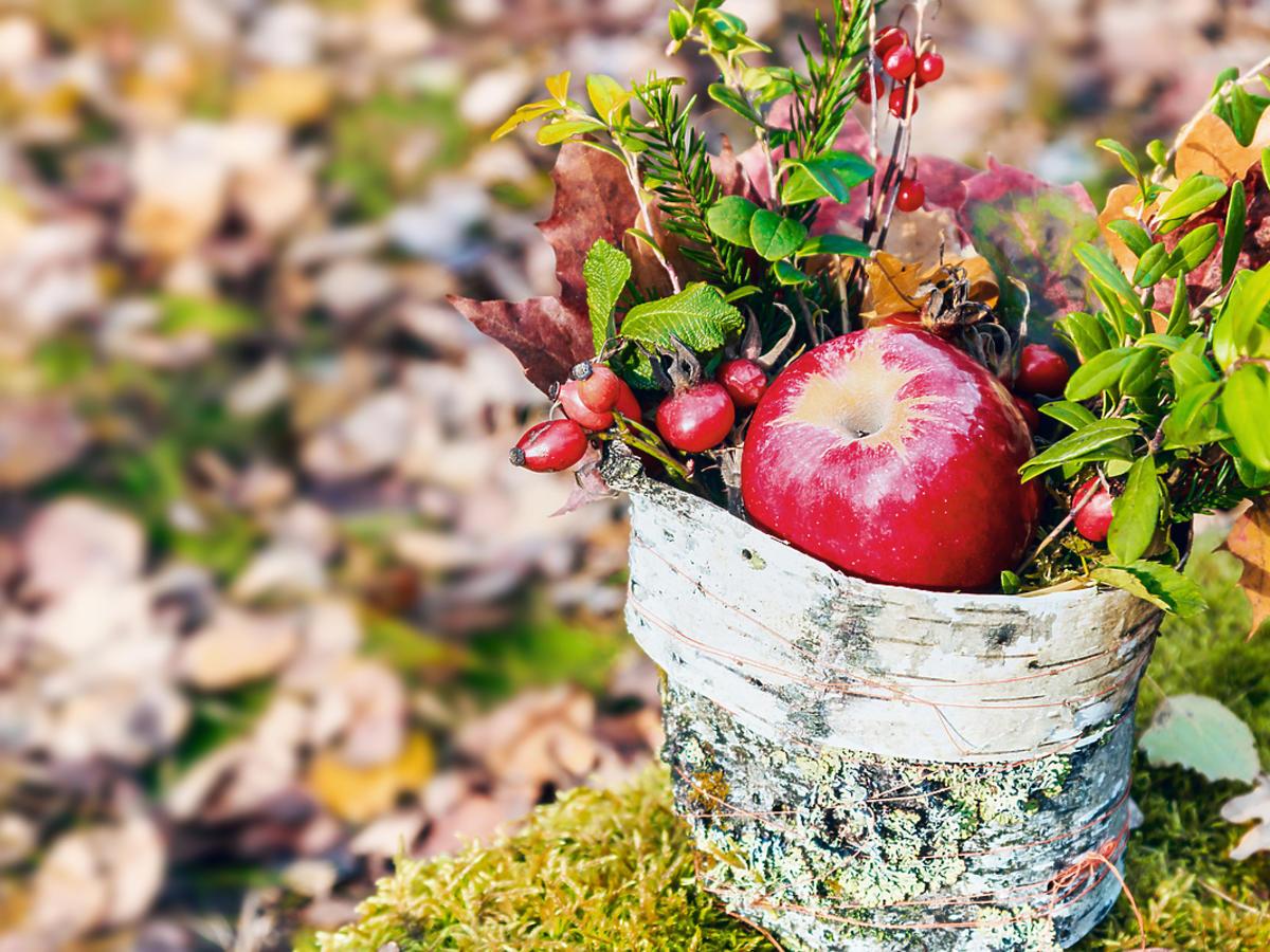 Kompozycja jesienna.