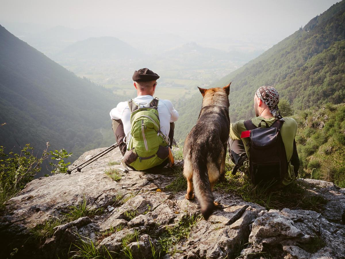 ludzie w górach z psem