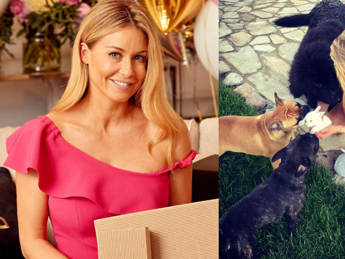 Małgorzata Rozenek pokazała zdjęcie z psami
