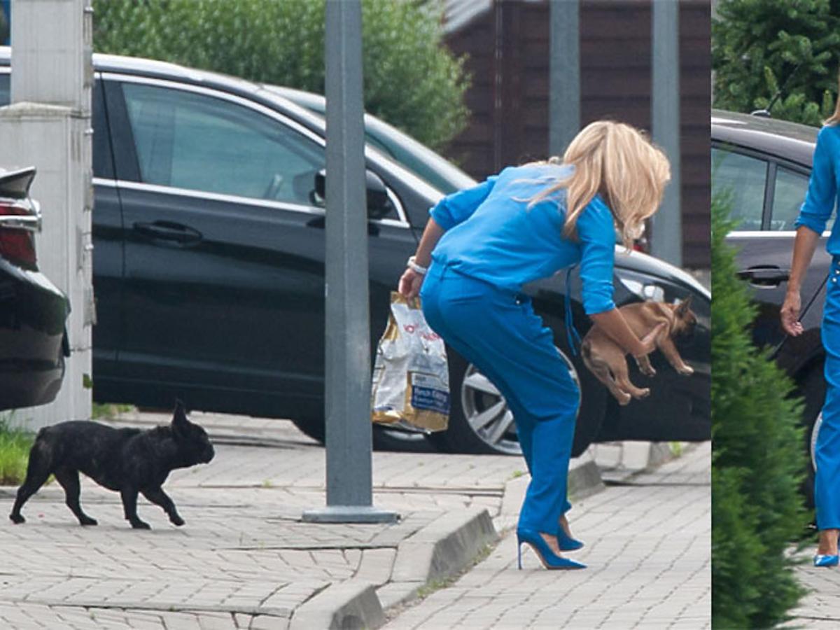 Małgorzata Rozenek w niebieskim kostiumie ze swoimi psami na spacerze