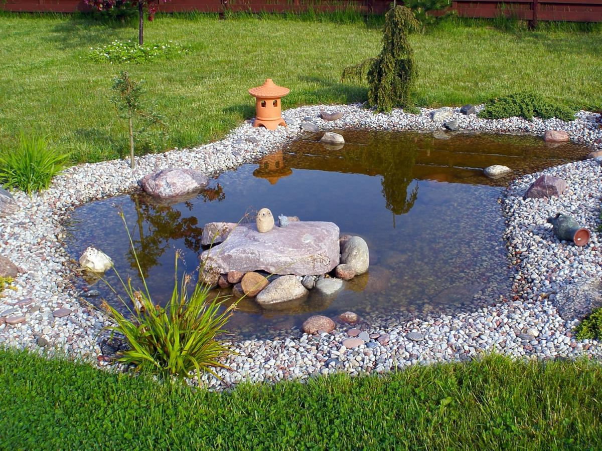 Oczko wodne w ogródku z fontanną.