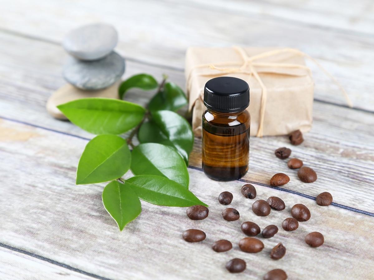 Odżywcze właściwości oleju z zielonej kawy