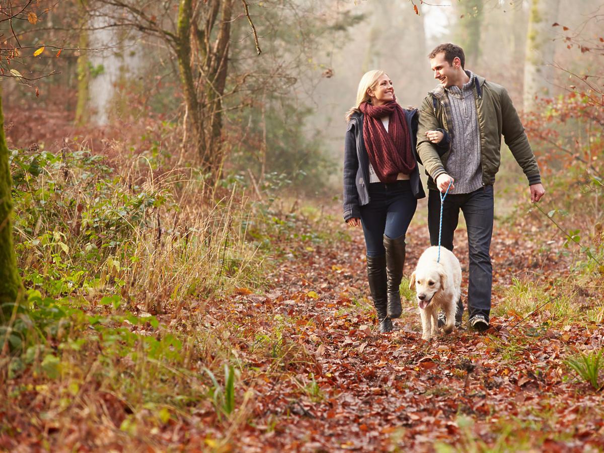 Para spaceruje z psem po lesie.
