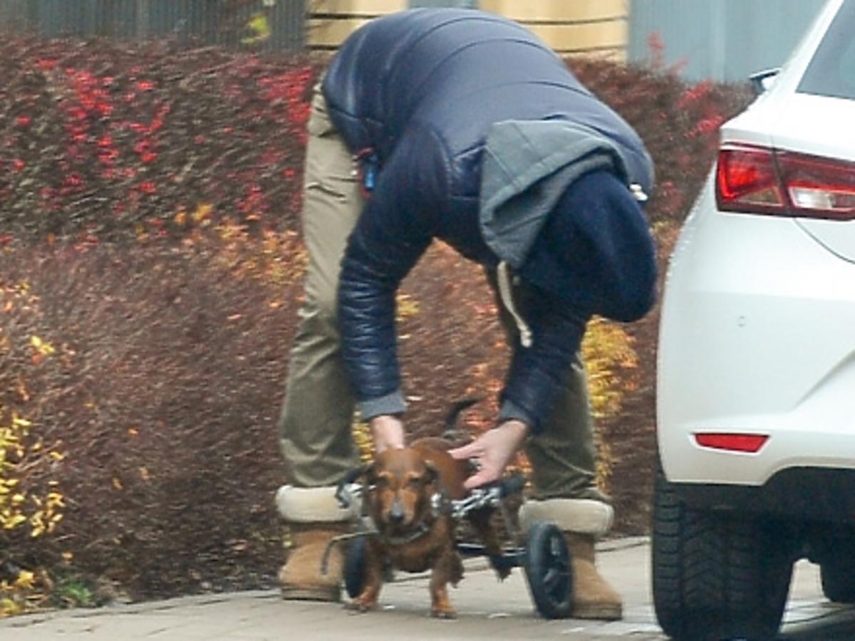 Paweł Deląg w niebieskiej kurtce i butach emu z psem na wózku