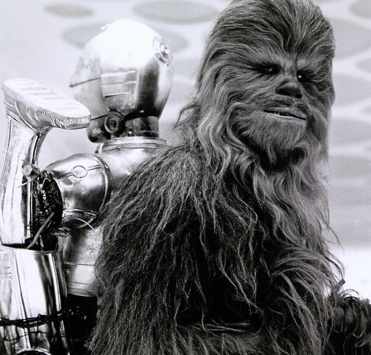 Peter Mayhew jako Chewbacca w