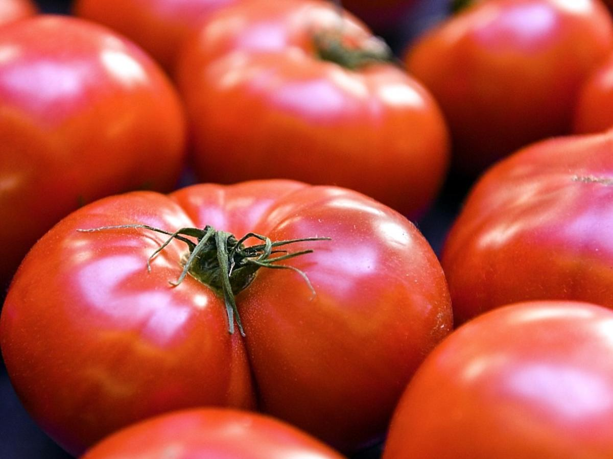 Pomidory kumano