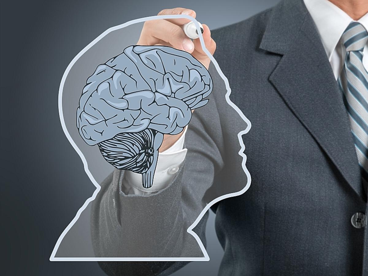 Rysunek, schemat mózgu