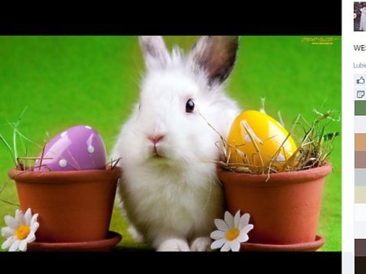 Wielkanocne życzenia od Karoliny Korwin-Piotrowskiej
