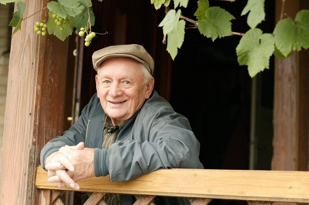 Witold Pyrkosz w serialu