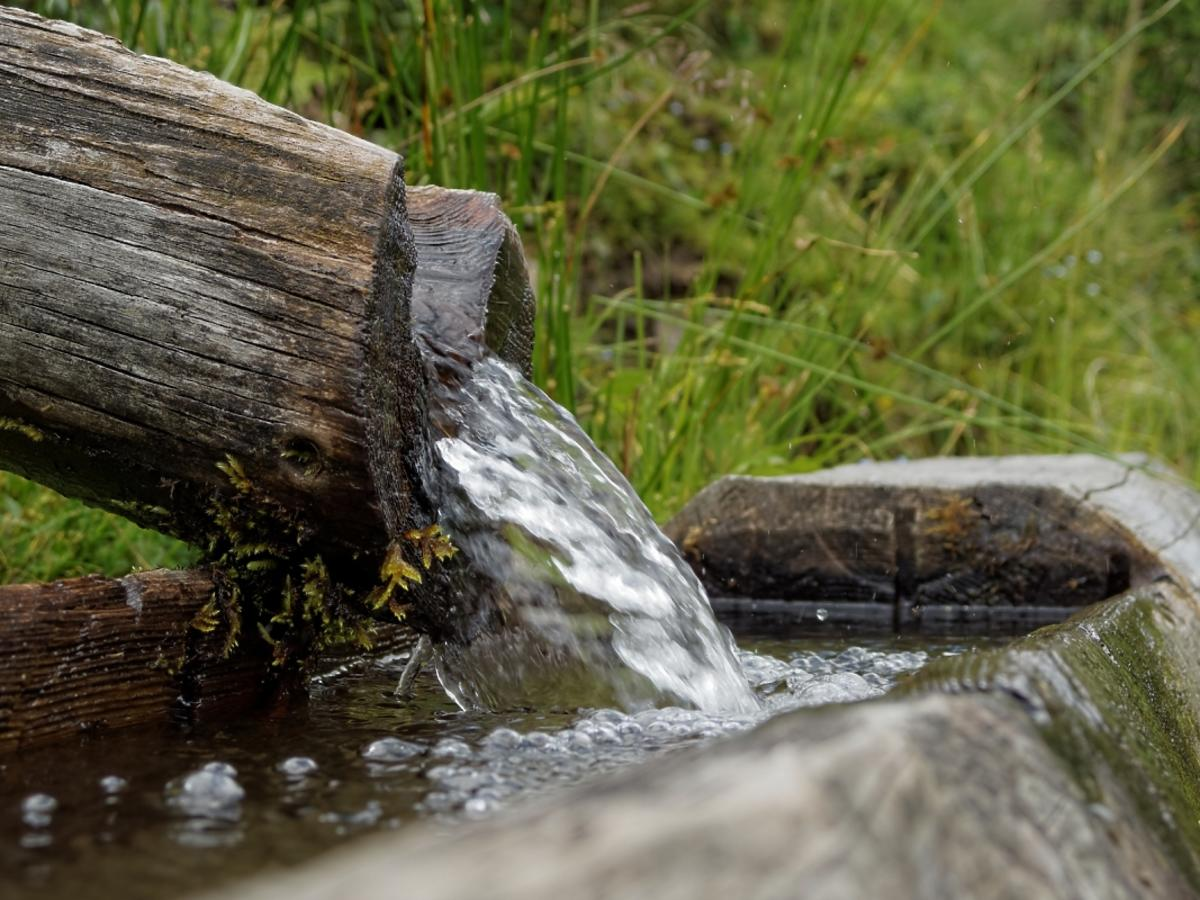 woda ze źródła