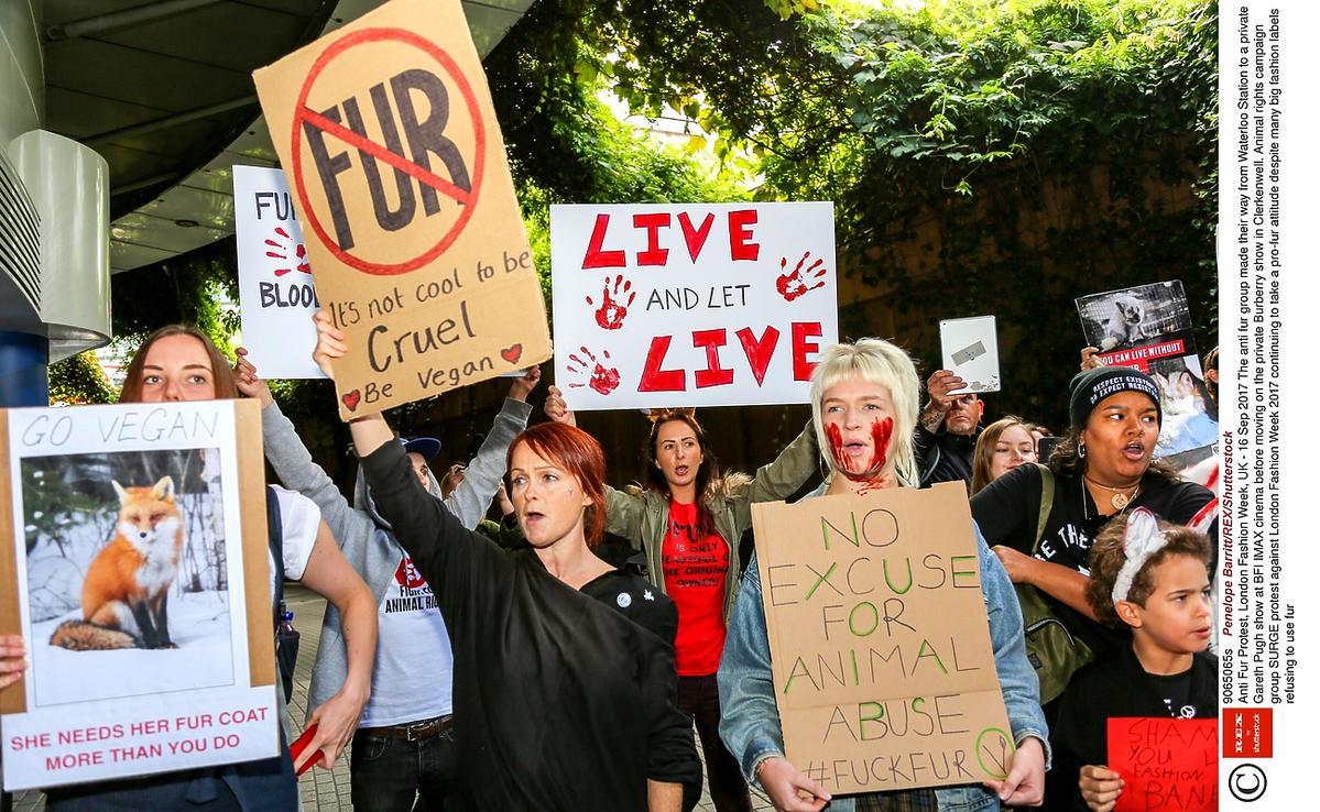 Protest przeciwko naturalnym futrom w Burberry