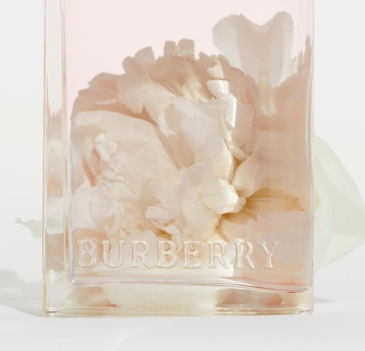 Her Blossom Burberry